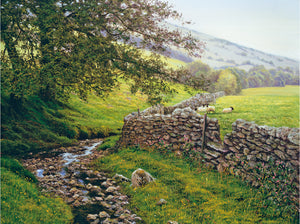 THE OLD DRY STONE WALL - Limited Edition Print