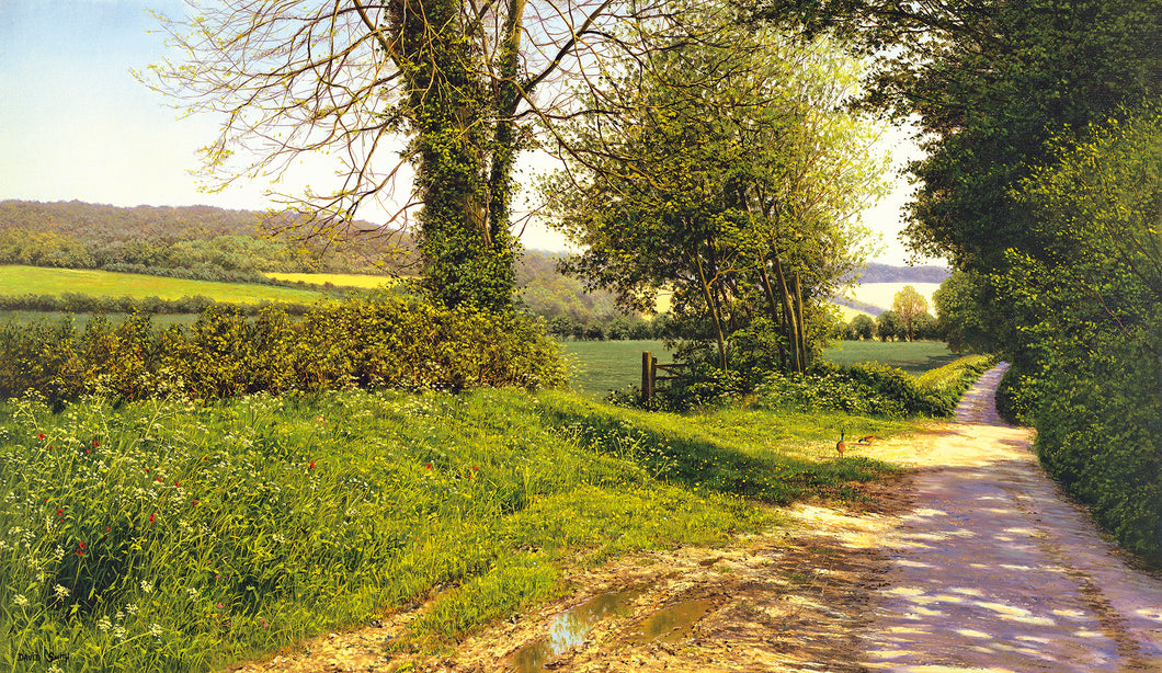 KENT LANE - Limited Edition Print