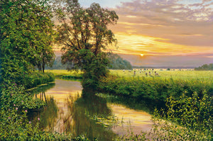 SUNSET ON THE COLNE - Limited Edition Print