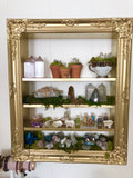 Crystal Organizer Display, Crystal collection