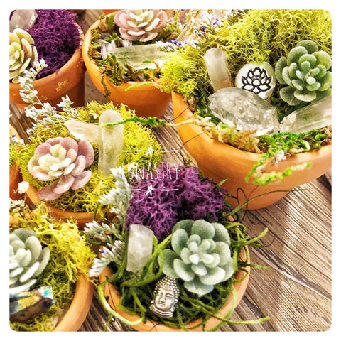 Magical Crystal Terra Cotta Pots, Mini gardens, Crystal Gardens