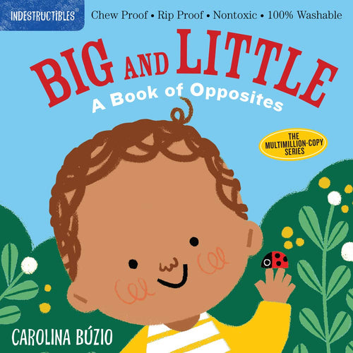 Big And Little A Book Of Opposites Indestructibles Book