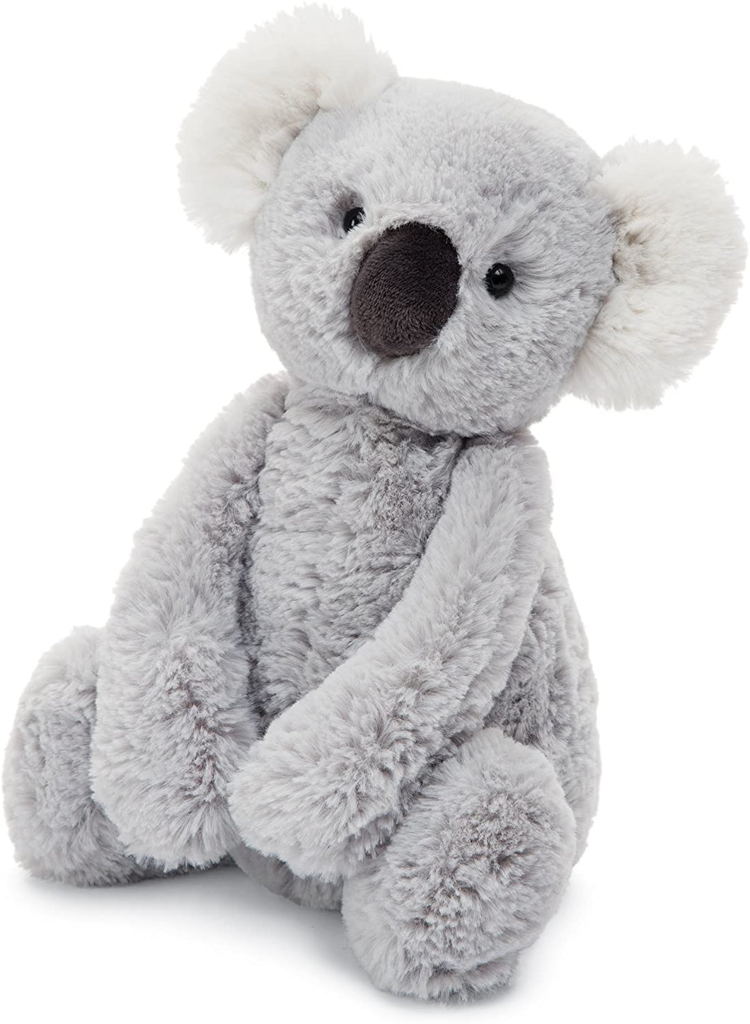 Medium Bashful Koala