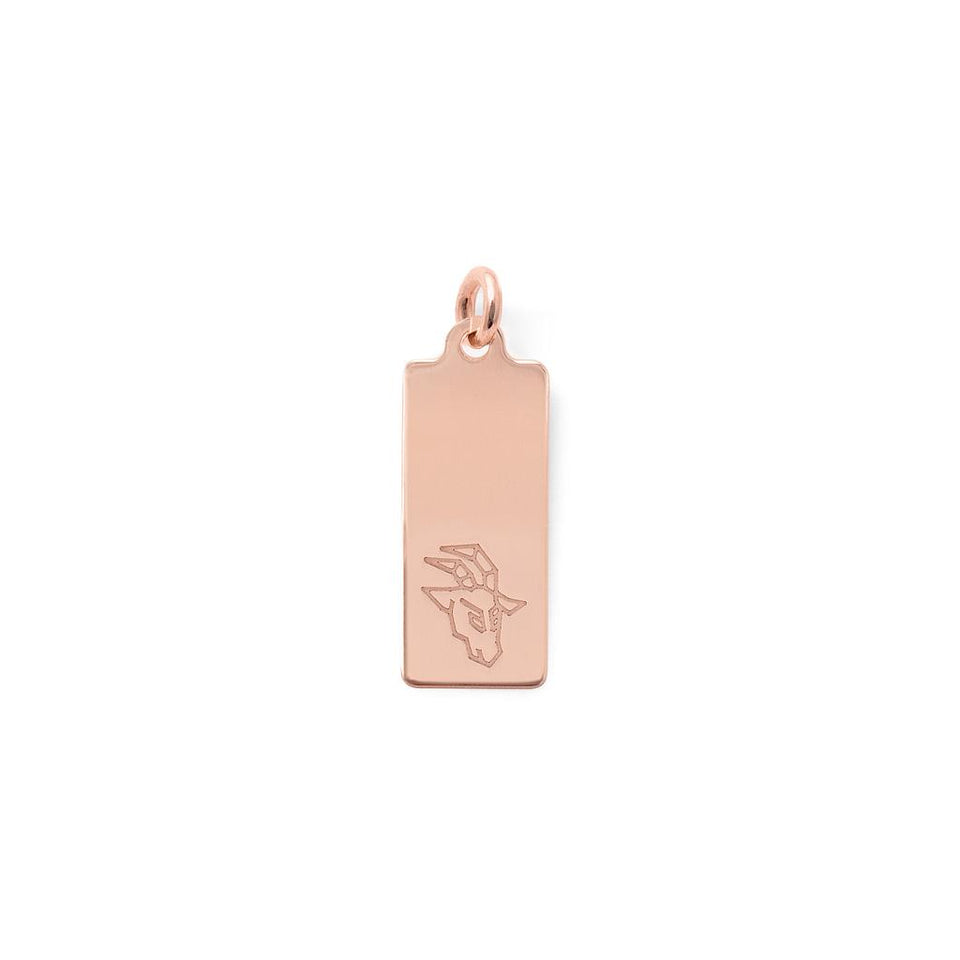 Make a Wish Capricorn Tag Pendant