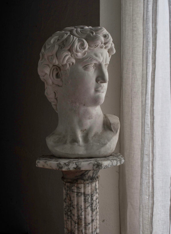 Plaster Bust of David, Neo Classical style