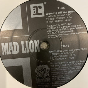 "Mad Lion ""Weed is All You Need"""