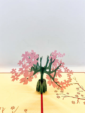 Pop-up Card _ Cherry Blossom (1)