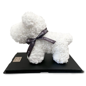 Gorgeous White Rose Puppy with LED Light and Gift Box - 40cm