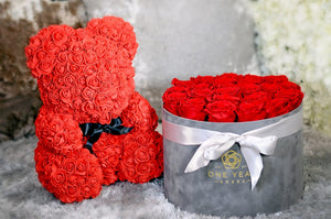 Gorgeous Red Rose Teddy Bear with LED Light and Gift Box - 40cm