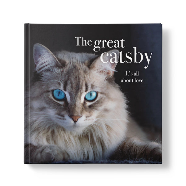 The Great Catsby It's all about Love - Affirmations