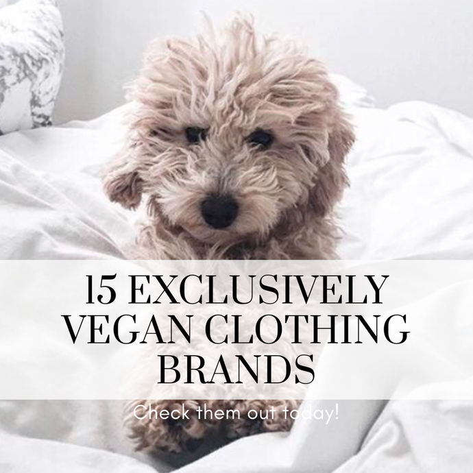 15 Exclusively Vegan Clothing Brands for Animal Lovers to Shop Today
