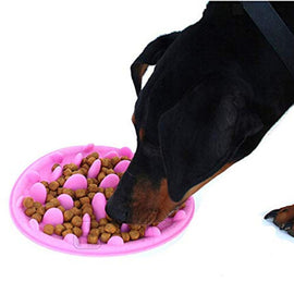 Goofy Tails Anti-Gulping Slow Feeder Food Eating Bowl for Dogs & Cats 24 x 18 x 3 cm - pet-club-india