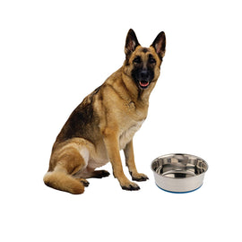 Goofy Tails Stainless Steel Food Bowl for Dog - pet-club-india