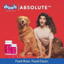Drools Absolute Skin + Coat Biscuits for Dogs 800 g - pet-club-india