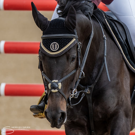 Black Gold | Cuffia per cavallo