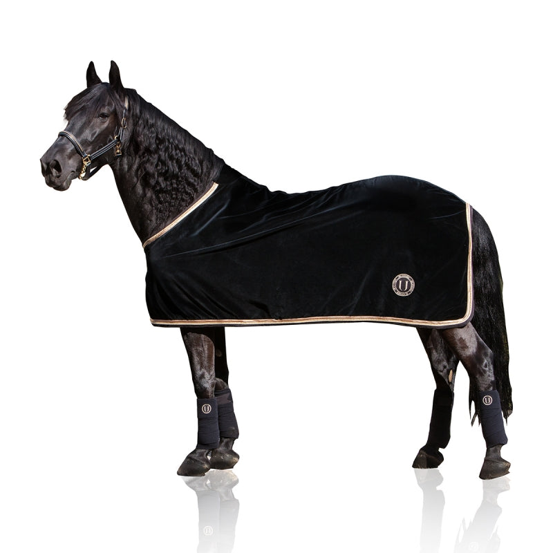 Black Gold | Coperta in velluto da cavallo