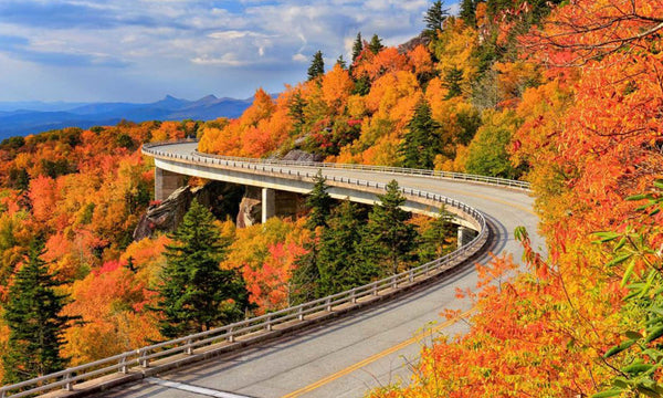 The colors of autumn light up the Blue Ridge Parkway on this dreamy fall road trip route.