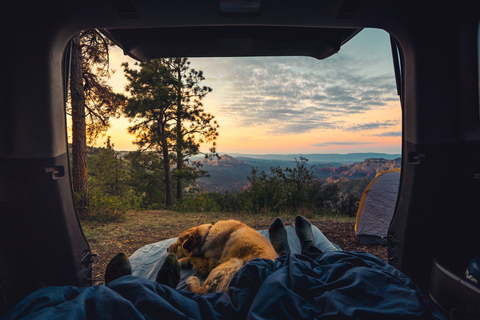 Car camping air mattress, car camping with a dog, camping dog, how to camp with dog, sleeping in a Subaru Outback, how to sleep in a car