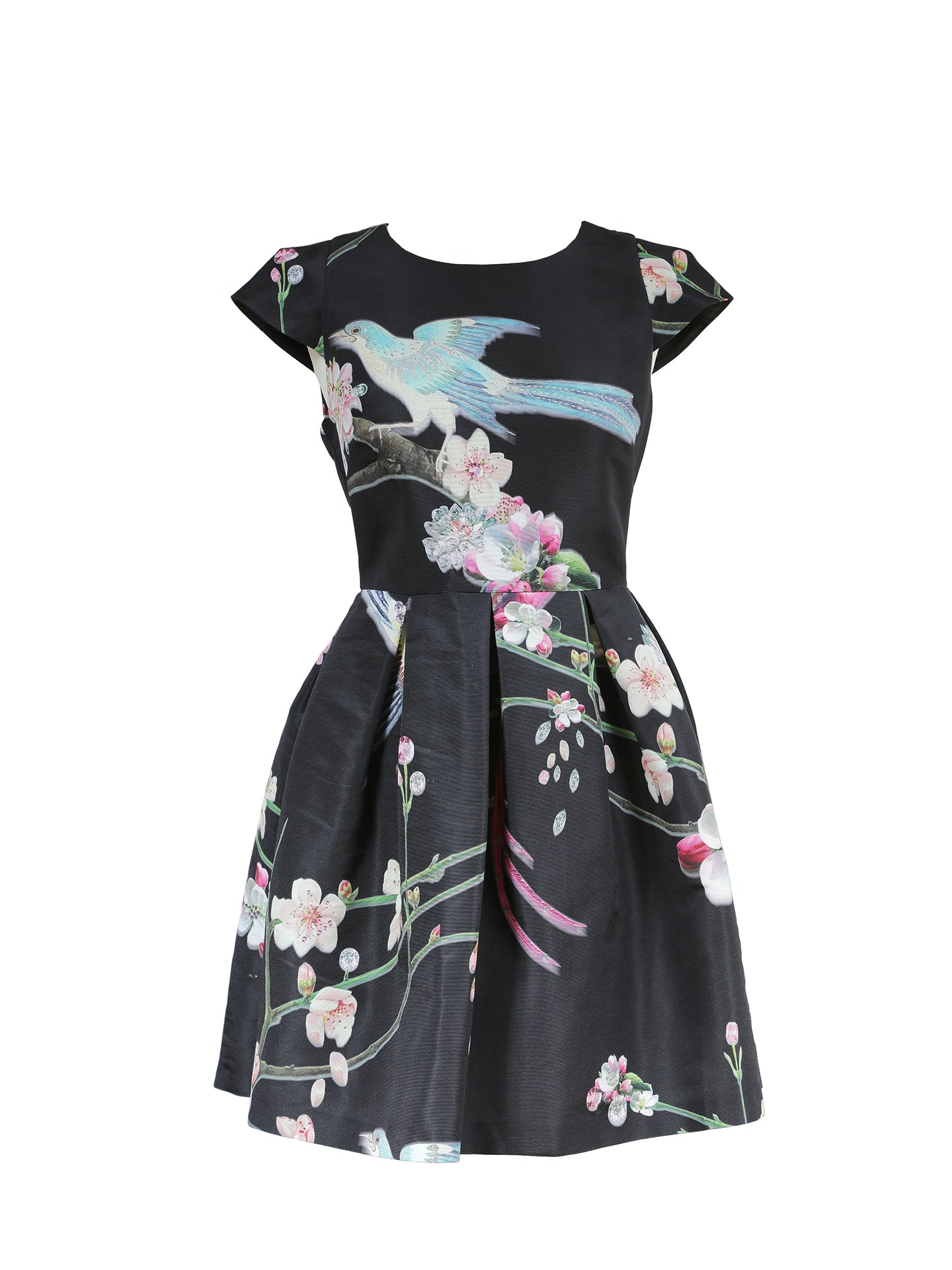 Ted Baker Bird and Flower Dress Size 34 (EU)