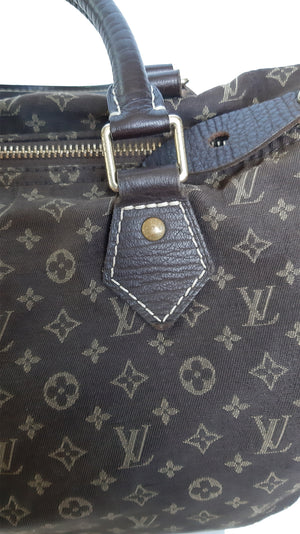 Louis Vuitton Speedy 30 Handbag in Monogram Brown Cotton