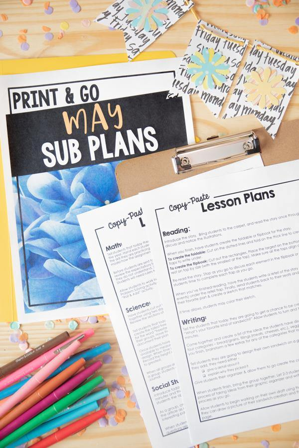 2nd Grade Sub Plan Bundle - Differentiated Teaching with Rebecca Davies