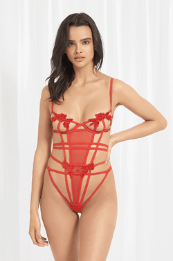 Bluebella - Eden Wired Bodysuit