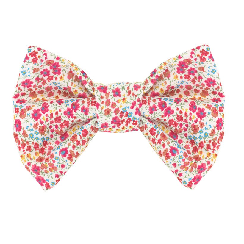 Bow Wow Dog Bow Tie - Amberley