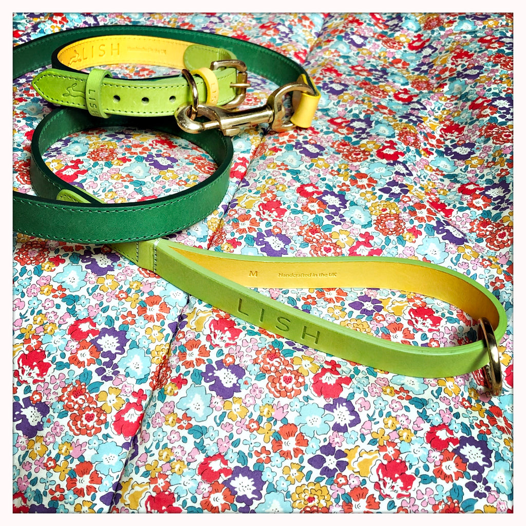 Lime designer leather dog leash and dog lead handcrafted in england