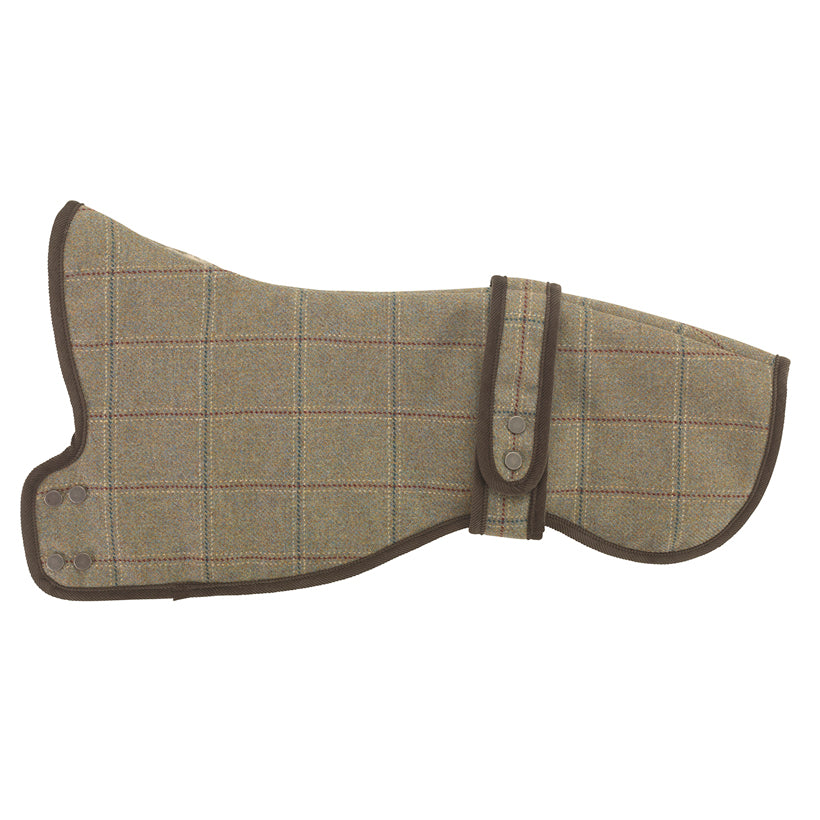 Digby Greyhound & Whippet Dog Coat