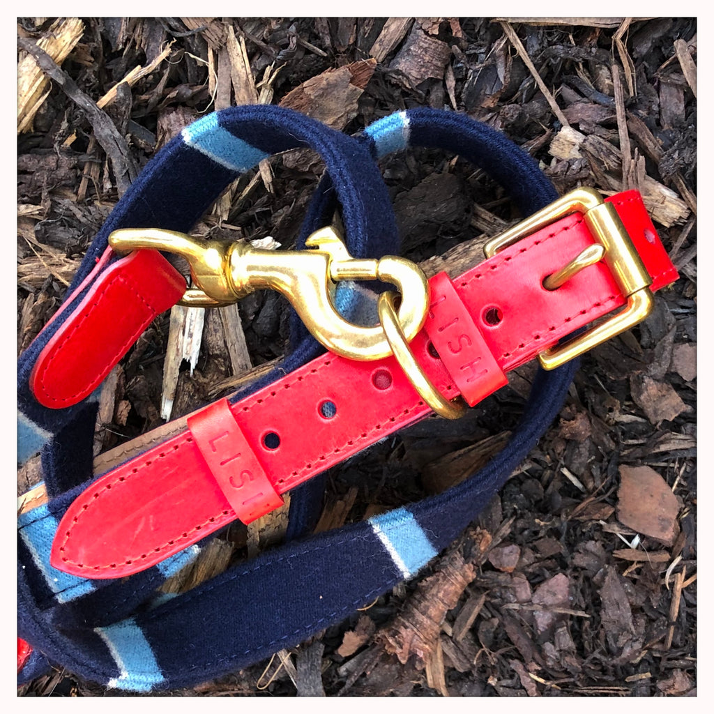 Designer red leather dog leash and dog lead made in england