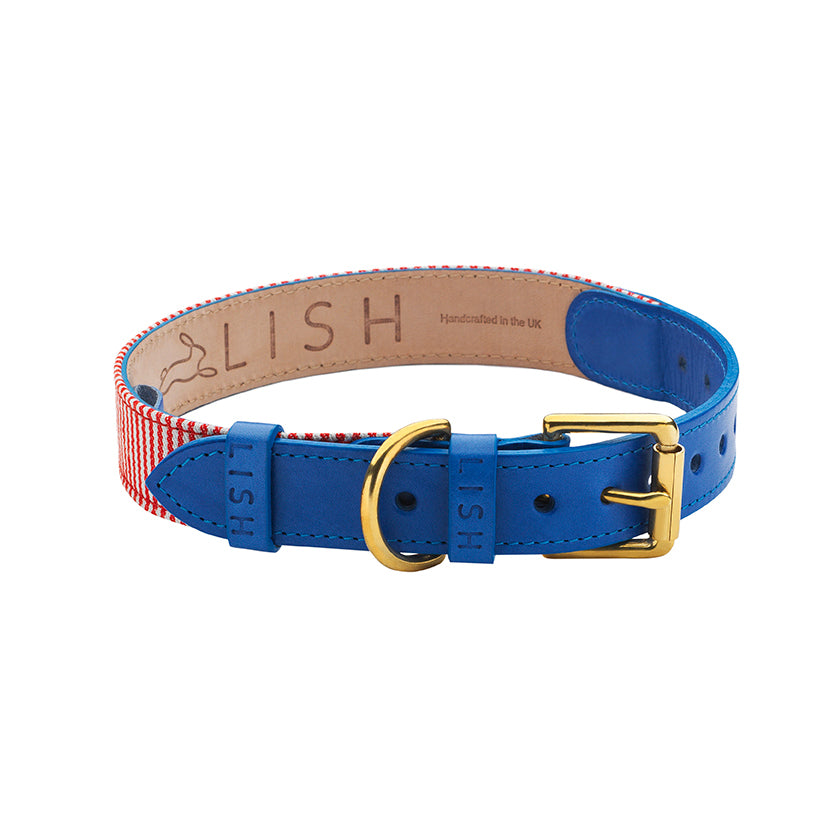 blue designer dog collar hand crafted