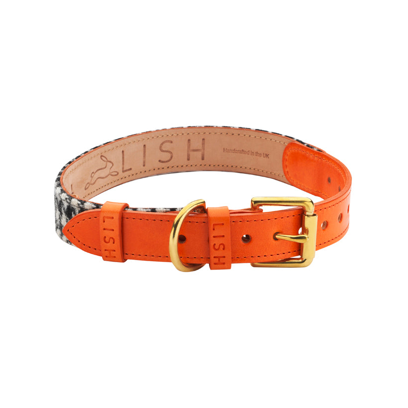 Orange designer dog collar made in england