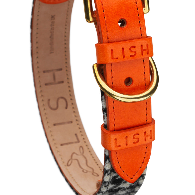 Orange designer dog collar with harris tweed