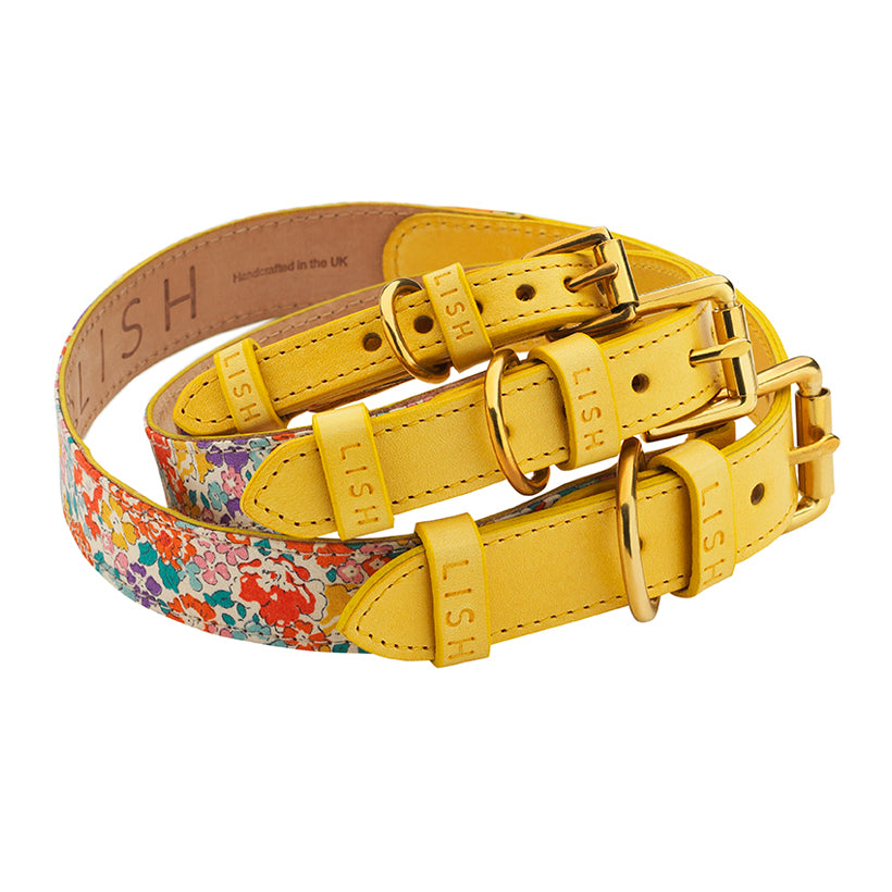 Hanbury YE16 Dog Collar
