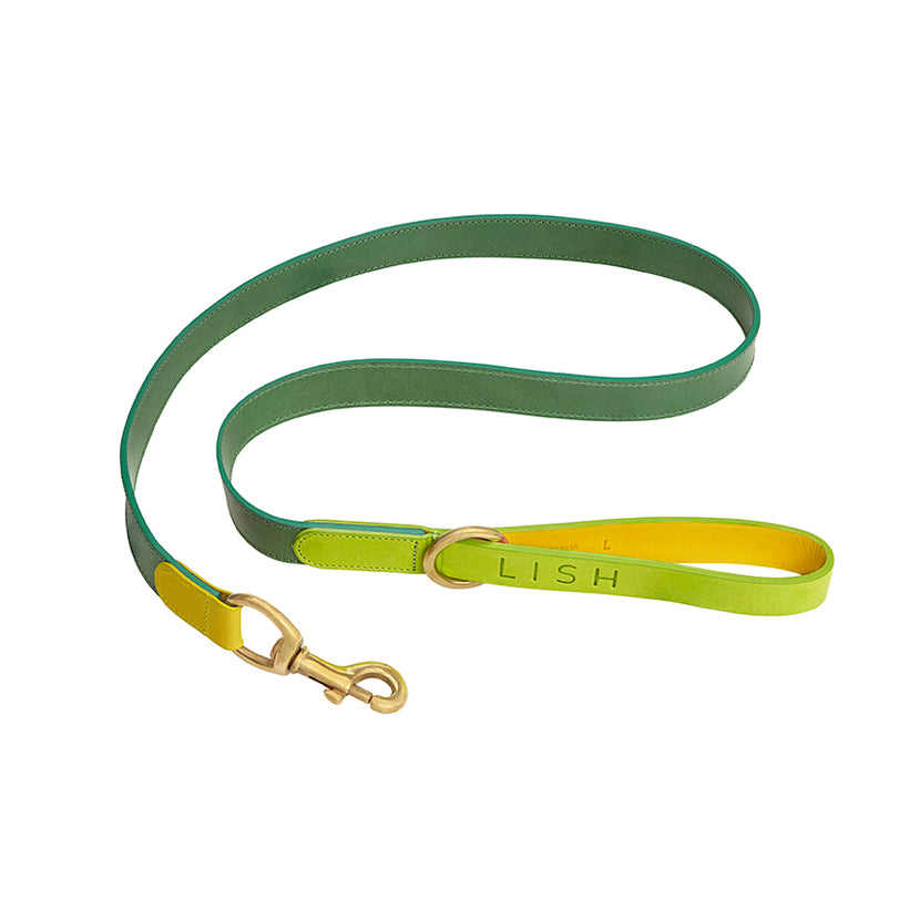 Leonard Lime Leather Dog Lead