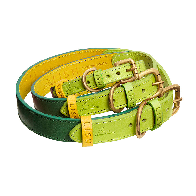 Yellow designer dog collar in italian leather for all dog breeds