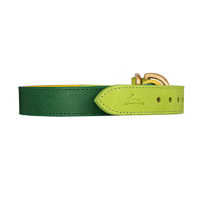 Lime Green designer dog collar