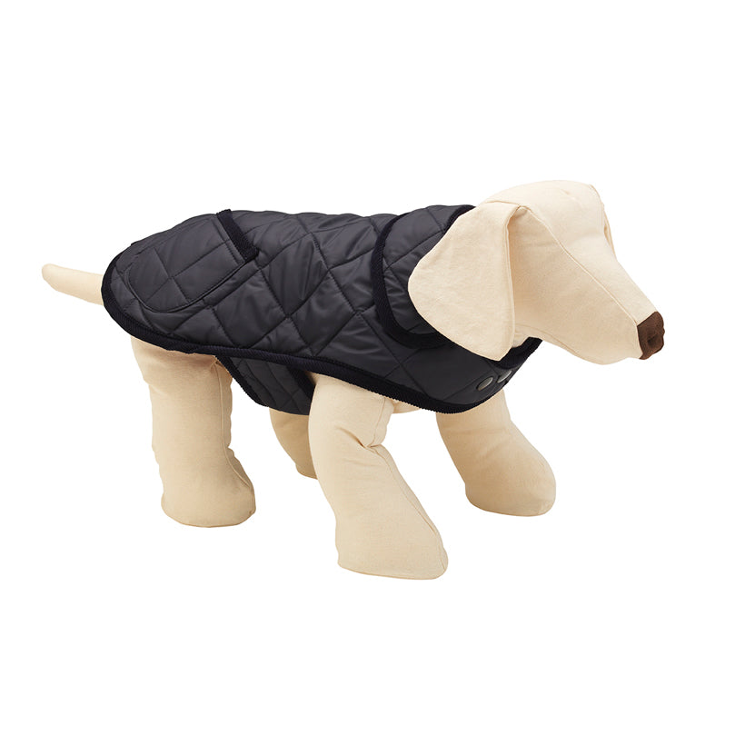 Navy quilted dog raincoat for all dog breed sizes