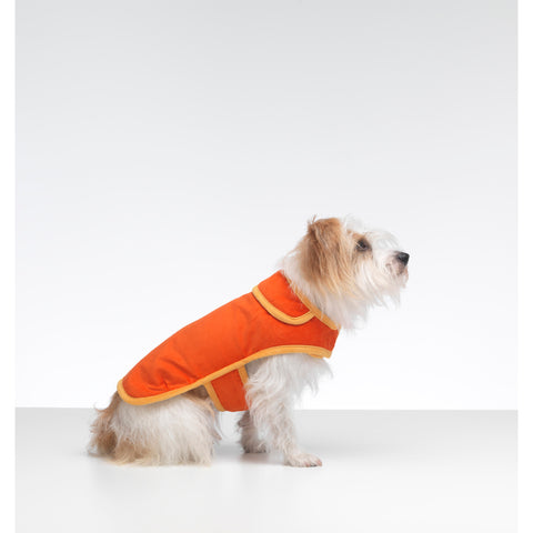 Bradbury Orange Corduroy Dog Coat