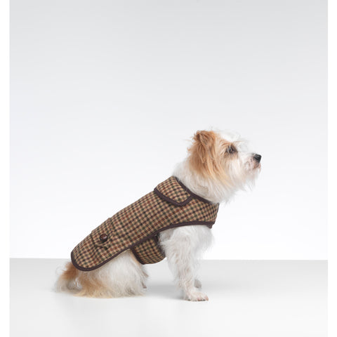 Sidworth Tweed Dog Coat