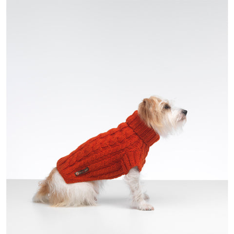 Wilmot Orange Dog Jumper