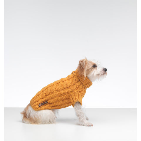 Wilmot Yellow Dog Jumper