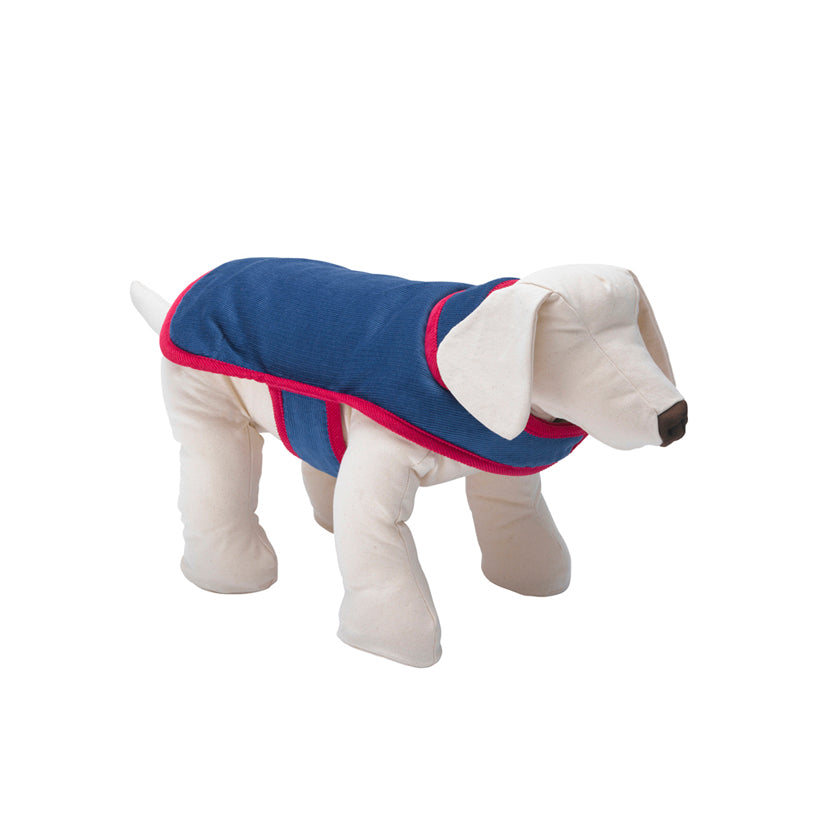 Bradbury Blue Corduroy Dog Coat