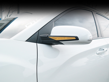 Load image into Gallery viewer, [Convoy] Side Mirror Guard | 2017+ Kona
