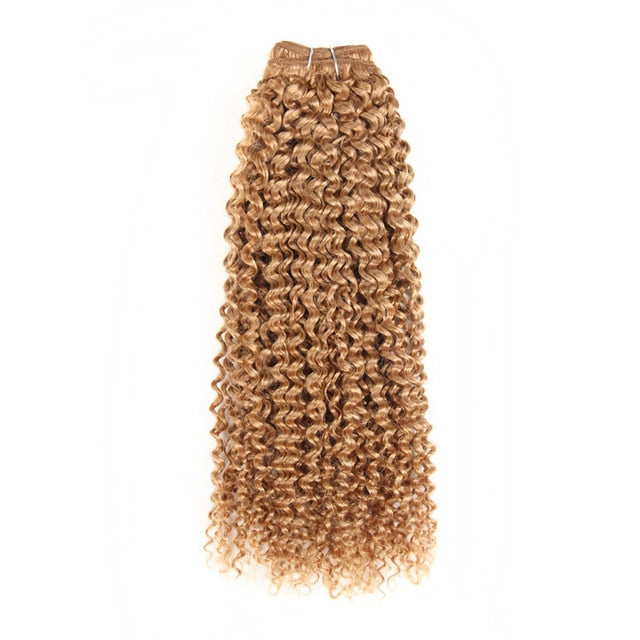 Brazilian Curly Pre-Colored Wefts - 18 inch - SilkyHairShop.com