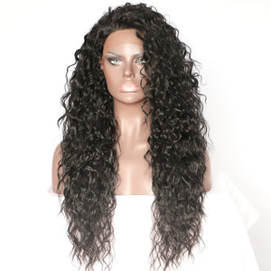 Raven Lace Front Wig