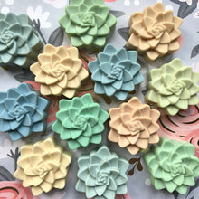 Load image into Gallery viewer, Succulent Shaped Artisan Soap