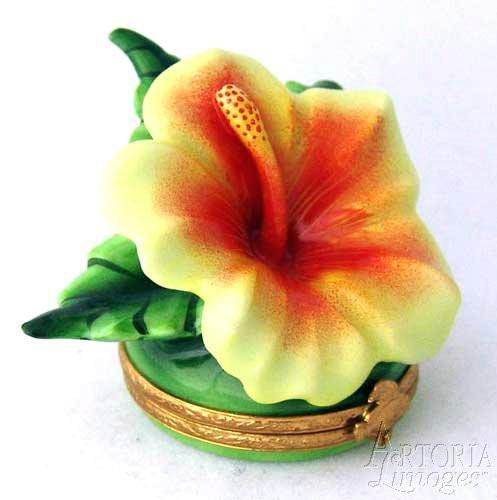 Hawaian Hibiscus Limoges Boxes Limoges Boxes Porcelain Figurines Collectibles Gifts