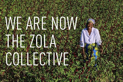 The Zola Collective: new logo, more products, same vision