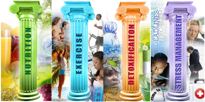 Build your Pillars of Wellness to enjoy true health and wellness.  Dr Toney Vendryes
